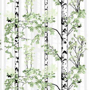 berkenboom Groen